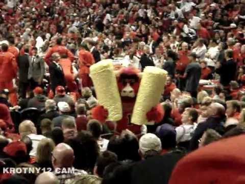 Don't mess with Benny The Bull - Popcorn