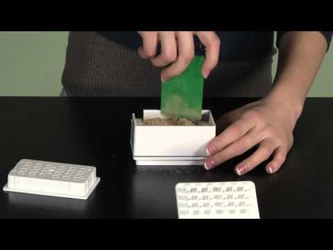 Capsule Machine for Making Herbal Capsules
