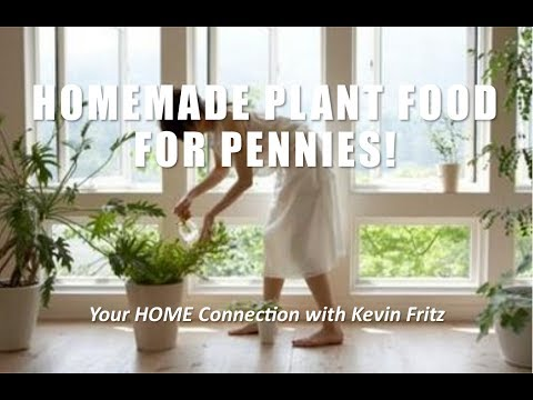 DIY Make Your Own Plant Food for Pennies!