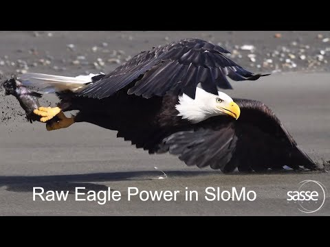 Dive into the Eagle Sphere - as never seen before in SloMo