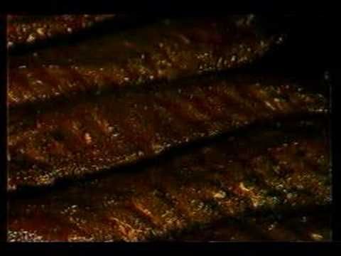 1985 Carsons Ribs Commercial