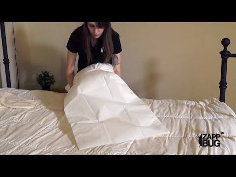 STEP #1: BED BUG FREE SAFE ZONE | Get rid of bed bugs