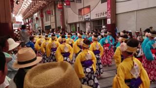 [4K]2017 第64回 高知よさこい祭り 本祭 ほにや 12:30~はりまや橋競演場
