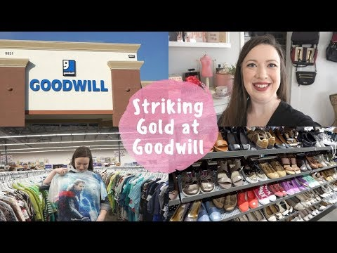 Vlog   Striking Gold at the New Goodwill!