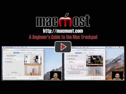 A Beginner's Guide to the Mac Trackpad (#1601)