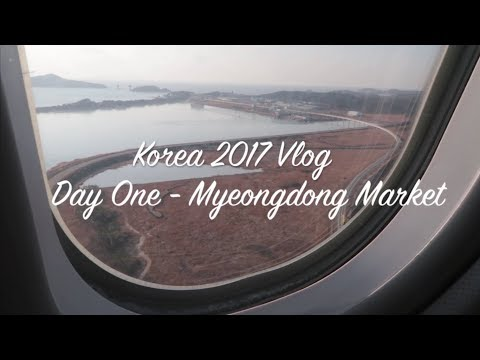 Korea 2017 | Vlog | Day 1 - Myeongdong Market and Delicious Street Food