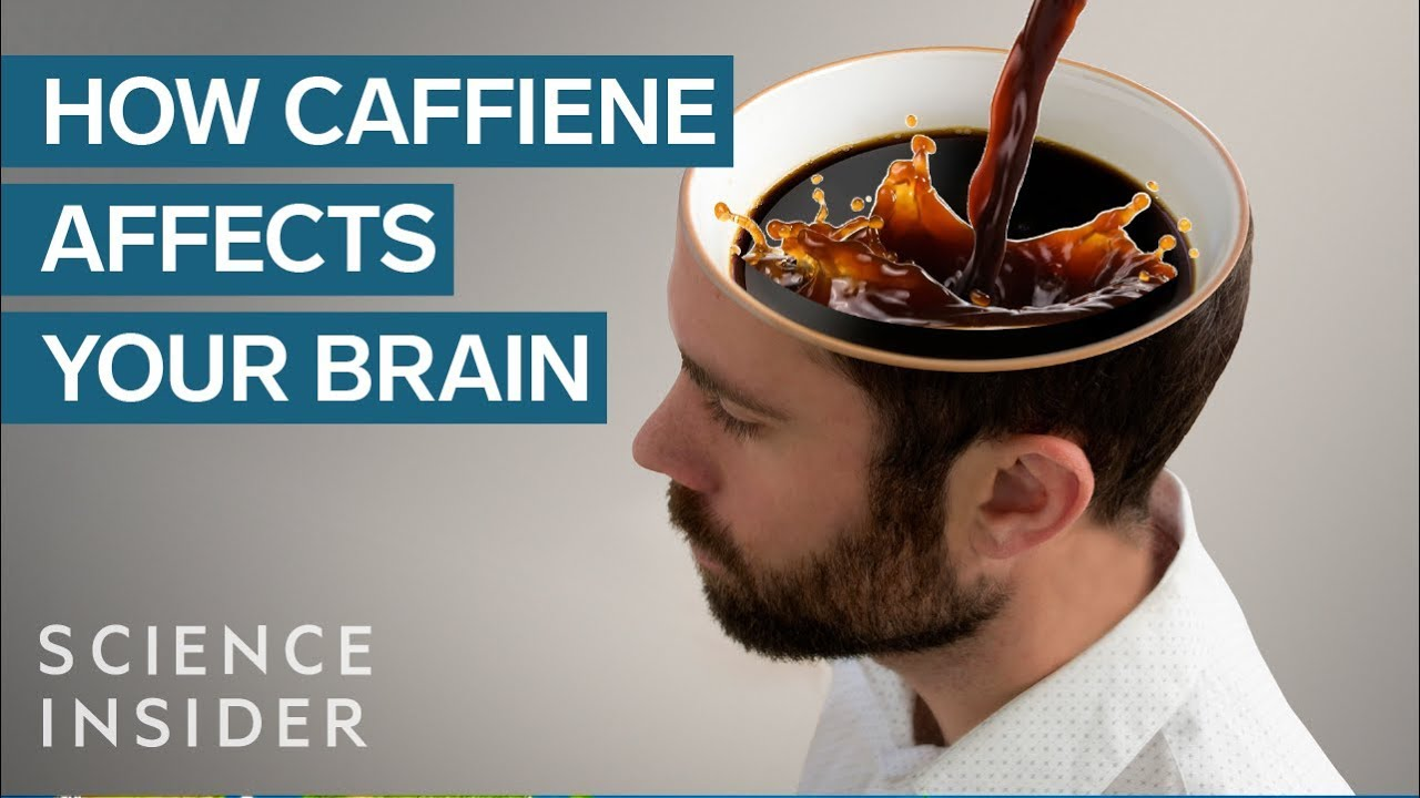 Download What Caffeine Does To Your Brain MP3 Gratis