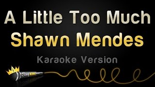 Shawn Mendes A Little Too Much Karaoke Version