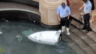 New Security Robot Found DEAD in Fountain From Apparent Suicide?! | What