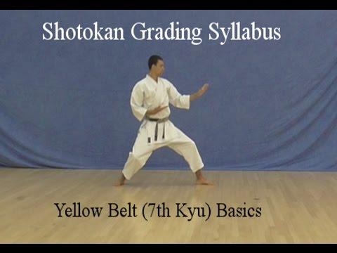 Yellow Belt 7th kyu Shotokan Karate Syllabus Basics