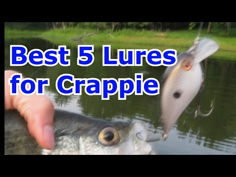 Top 5 Best Crappie Fishing Lures, baits, and Jigs