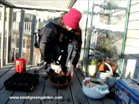Make Your Own Potting Soil for Small Space Organic Gardening.m4v