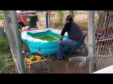 Cleaning a pool