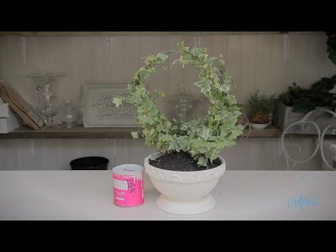 Round Ivy Topiary Arrangement Floristry Tutorial
