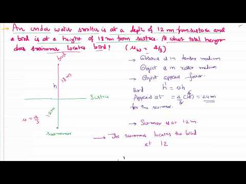 Ray Optics Problem Apparent Location of bird for a fish in water for IIT-JEE and NEET Physics