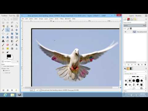 How to Replace Color in GIMP
