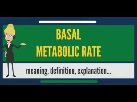 What is BASAL METABOLIC RATE? What does BASAL METABOLIC RATE mean? BASAL METABOLIC RATE meaning