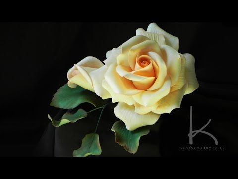 Kara Andretta - Sugar Rose Tutorial with Narration