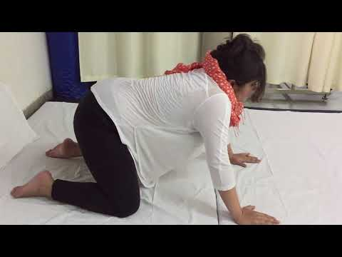 बिल्ली और ऊंट Exercise during Pregnancy video in hindi