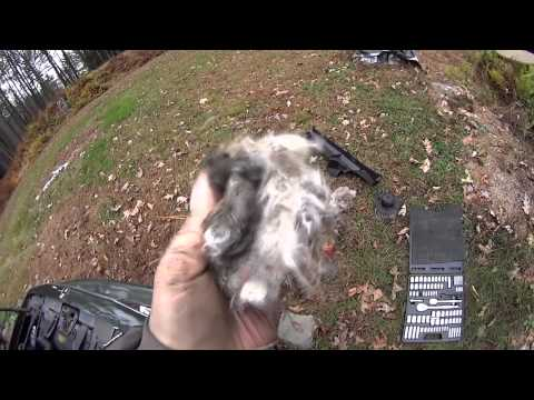 Buick Century, Mouse nest removal in air vents
