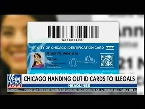 Chicago Handing Out ID Cards To Illegals - Fox & Friends