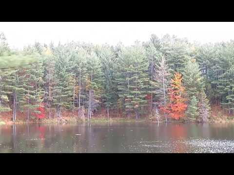 Adirondack Scenic Train Ride - Fall Foliage