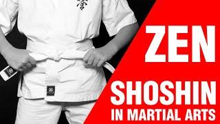 Zen In Martial Arts: SHOSHIN | ART OF ONE DOJO