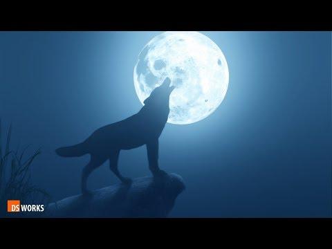 THE WOLF    Photoshop Manipulation Tutorial    Dark & Creative Moon Light    Ds works