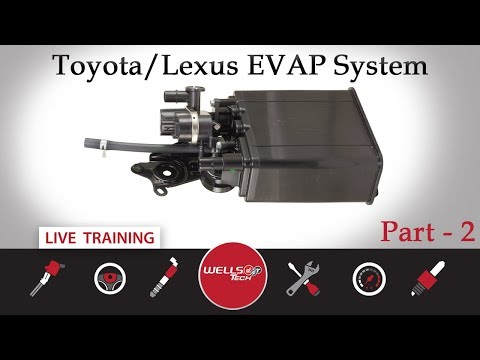 EVAP - Toyota & Lexus Systems Part 2 - Key Off, Bladder, and Closed Systems