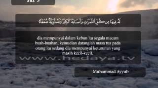 018 / Juz 3 / Al Baqarah (263-271) / Syaikh Muhammad Ayyub