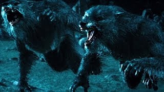Download Top 10 Werewolf Movies (REDUX) Video