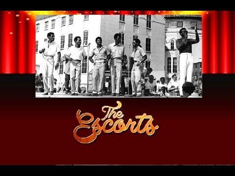THE ESCORTS - There's A Love For Everyone