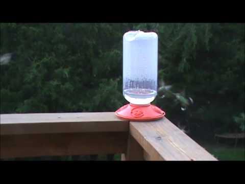 Dr. JB Switchable 80 oz Hummingbird Feeder (SE6027)