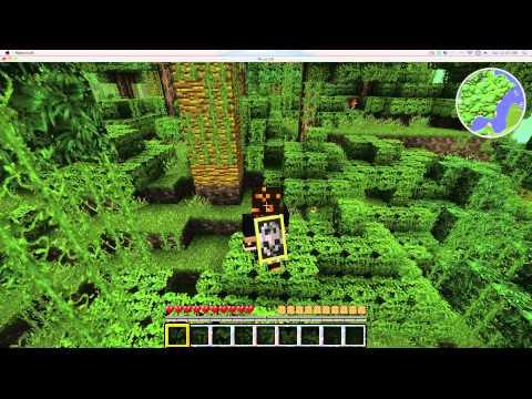 Minecraft Test Record