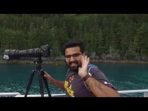 Sunset Glacier Tour in Whittier, Alaska