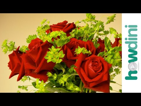 Valentine's Day Tips: How to Buy Roses | Howdini