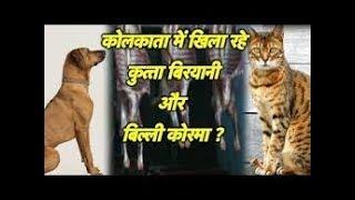 POLICE RAID at Ashoka HOTEL HOWRAH Videos - 9tube tv
