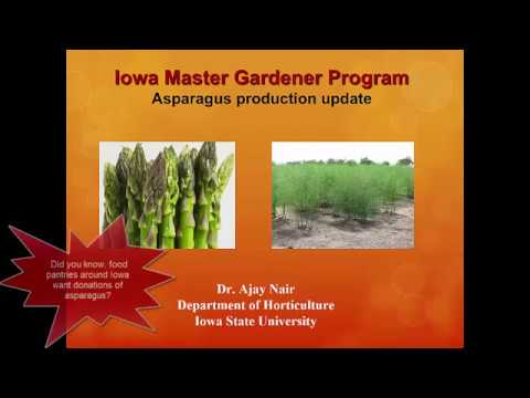 C: Growing Together: Growing and Harvesting Vegetables