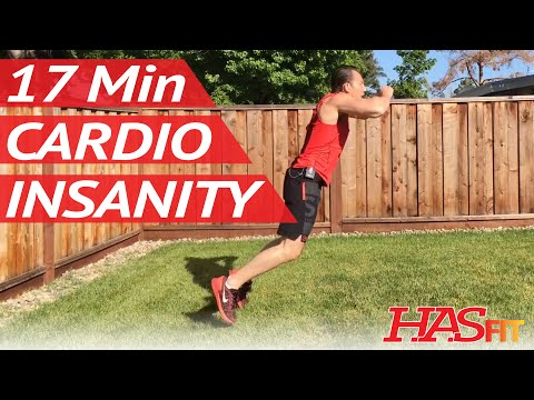 17 Min Cardio Insanity Workout 2 - HASfit Cardio Workouts Exercises