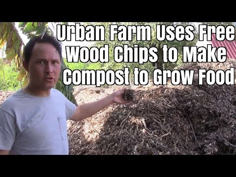 Urban Farm Uses Free Wood Chips to Make Compost and Grow Food