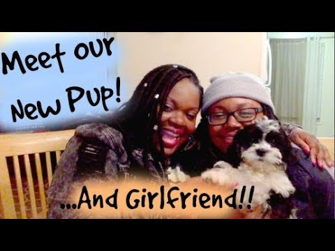 Meet Our New Puppy and My Girlfriend!! How We Met & More!