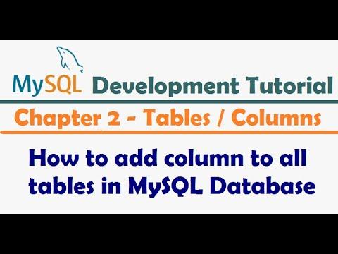 How to add column to all tables in MySQL Database - MySQL Developer Tutorial