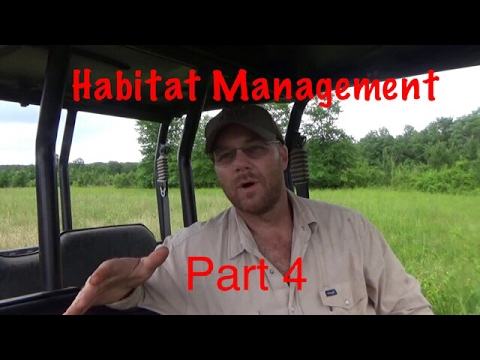 Part 4 Whitetail Habitat Management
