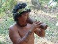 Terra Preta - Das Schwarze Gold des Amazonas