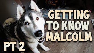 Getting To Know Malcolm Part 2!