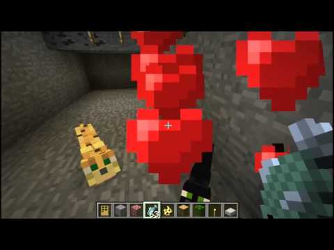 How to Tame Ocelots in Minecraft