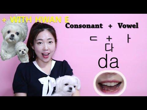 Korean Basic Alphabet Pronunciation That Will Improve Your Fluency In Korean