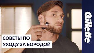 Download Как Отрастить Бороду: Советы по Уходу за Бородой | Gillette STYLER Video
