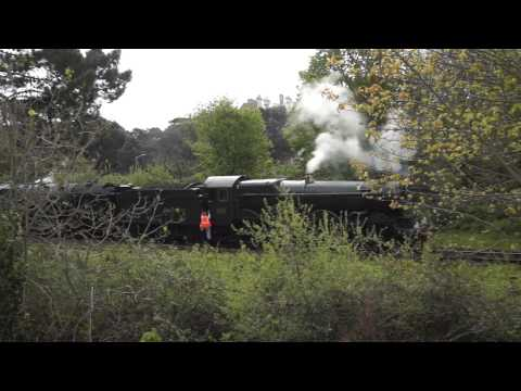 Steam Trains on Falmouth Branch Line