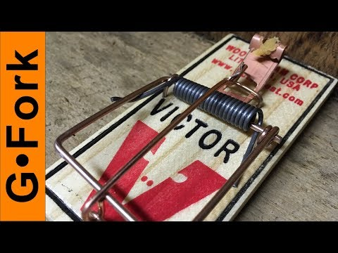 How To Get Rid Of Mice with MORE Mouse Trap Hacks | GardenFork